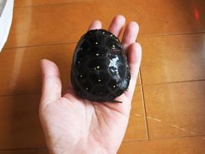 kibosi_20130217_1.jpg