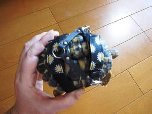 osanpo_anzu1.jpg