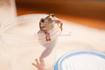 frog_pose29.png