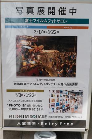 DSC01382-1.jpg